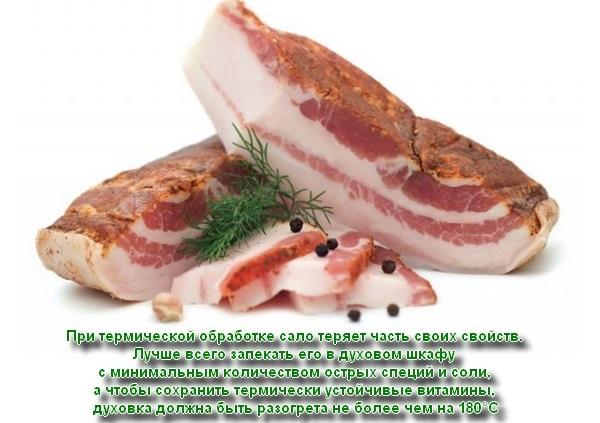 Полезные свойства сала для организма. Соленое свиное, курдючное, нутряное, медвежье, копченое, вареное, топленое, жареное. Как засолить в домашних условиях