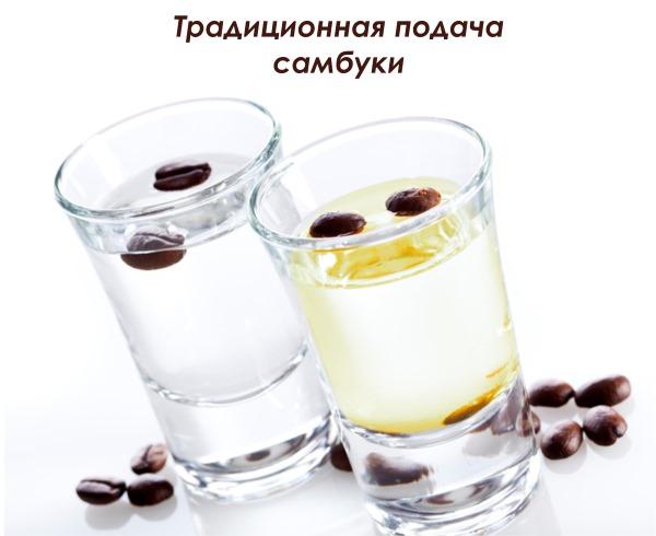 Самбука. Что это за напиток, рецепт ликера, градусы, вкус, как пить крепкий, экстра. Цена