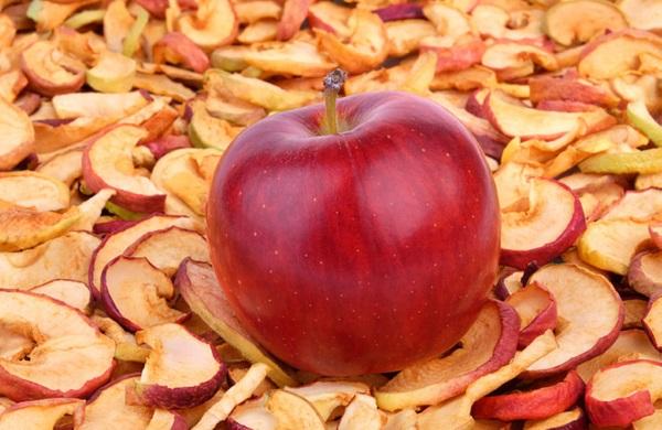 Заготовки из яблок на зиму. Лучшие рецепты: маринованные в сиропе, без стерилизации, для пирогов