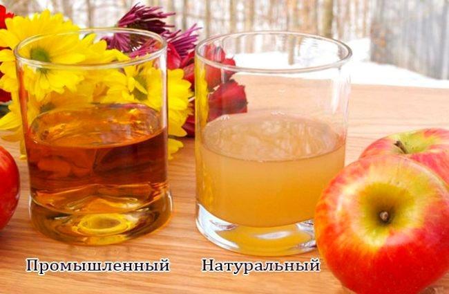 Как приготовить яблочный уксус в домашних условиях. Рецепт из яблок, сока без дрожжей, с медом, по Джарвису