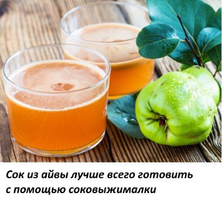 Айва. Полезные свойства, рецепты применения в народной медицине. Противопоказания