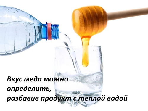 Мед липовый. Полезные свойства и противопоказания, от чего помогает