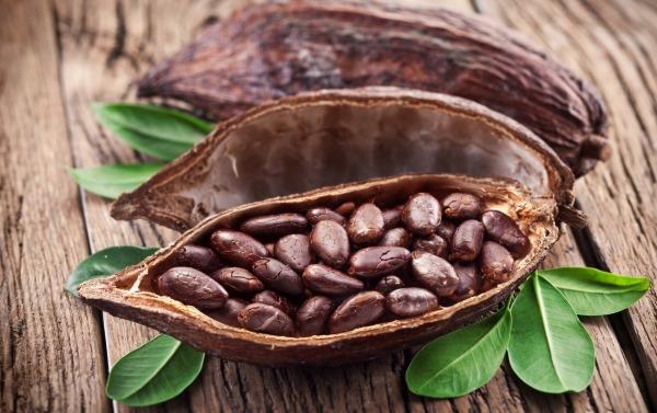 Какао. Польза и вред для здоровья. Как готовить порошок, масло, бобы, как применять