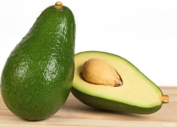 Как вырастить авокадо из косточки, чтобы были плоды в домашних условиях. Фото