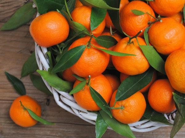 Мандарины. Польза и вред для здоровья, калорийность, как употреблять для похудения, в народной медицине