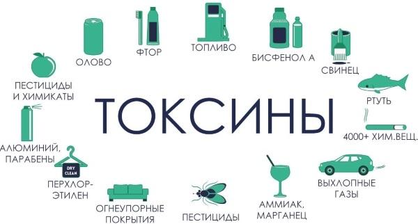 Очищение организма для похудения. Препараты, продукты, вода, процедуры в домашних условиях