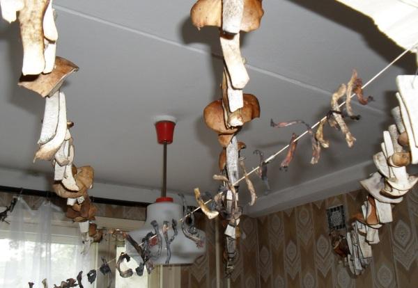 Рядовка фиолетовая. Как готовить грибы на зиму, описание, рецепты, правила безопасности, съедобная или нет