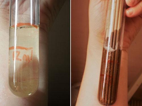 Ароматические палочки для дома и диффузоры. Где купить, как использовать, польза или вред