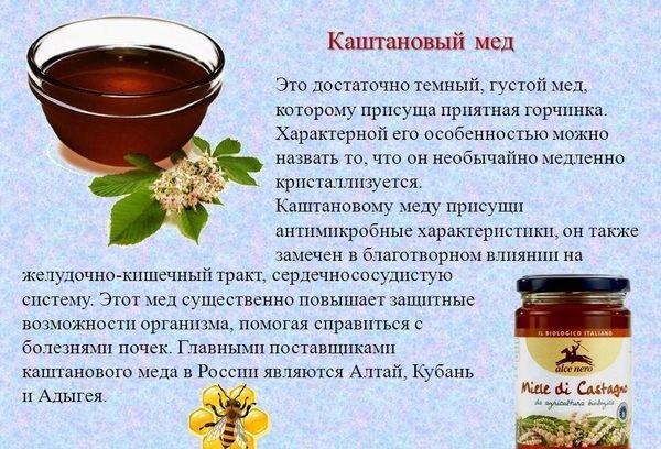 Каштановый мед. Полезные свойства, как определить подделку, рецепты применения