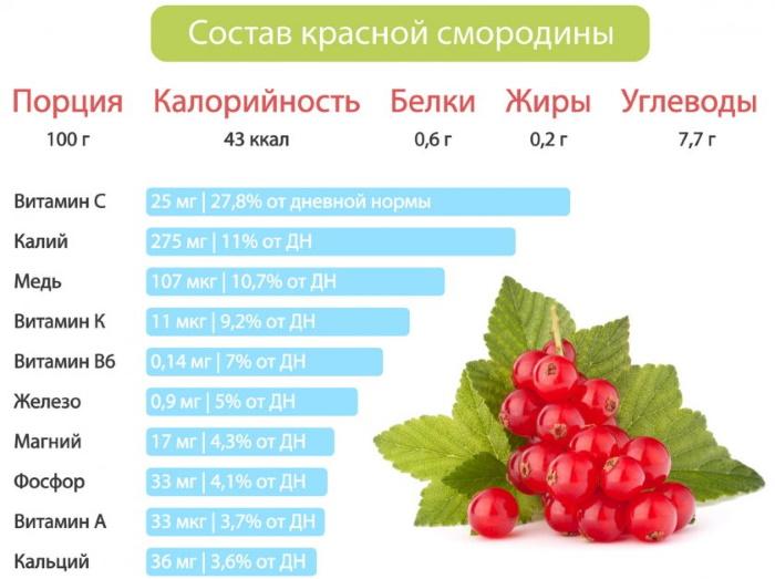 Красная смородина. Полезные свойства, сорта, рецепты лечения, противопоказания