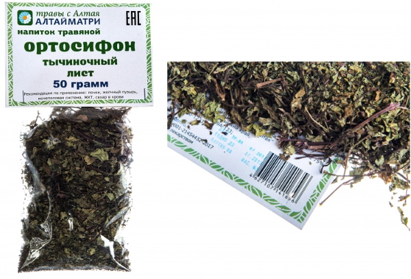 Ортосифон тычиночный. Фото, лечебные свойства, рецепты применения, чай, противопоказания