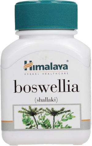 Босвеллия трава. Свойства, рецепты применения экстракта, мази, противопоказания