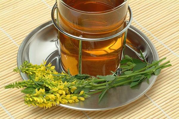 Донник желтый. Лечебные свойства, рецепты приготовления и применения, противопоказания