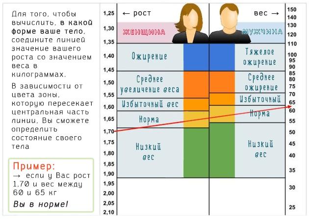 Морозник кавказский. Лечебные свойства, рецепты применения, противопоказания