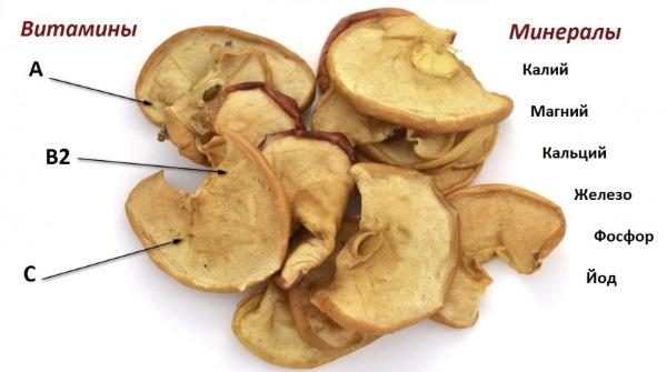 Яблоки сушеные. Польза и вред, калорийность, рецепты в духовке, микроволновке, на зиму