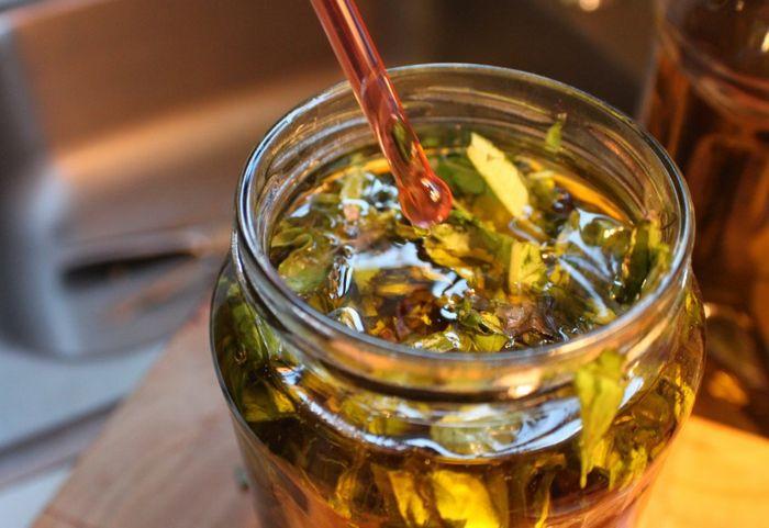 Астрагал - трава жизни. Фото, где растет шерстистоцветковый, лечебные свойства растения, рецепты применения