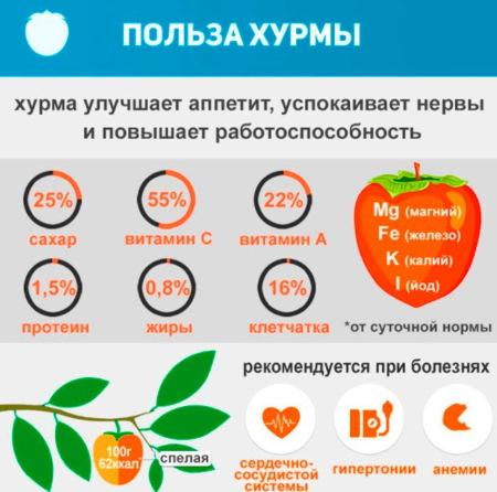 Королек фрукт. Полезные свойства, калорийность, вред, как действует на пищеварение