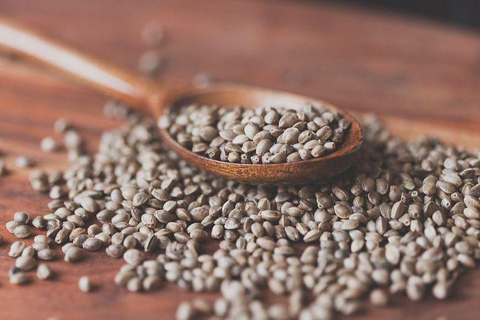 Конопляное семя. Полезные свойства, как принимать мужчинам, женщинам, вред, противопоказания