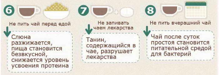 Кудин чай. Полезные свойства, как заваривать, применять, противопоказания