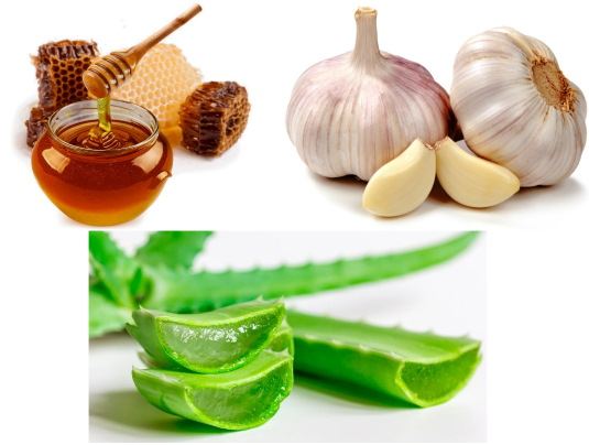 Мед с чесноком. Польза и вред, дозы, рецепты от кашля, простуды, глистов, давления