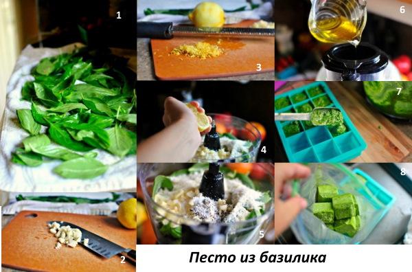 Базилик: как употреблять в сыром виде, когда собирать, засушить, польза, рецепты