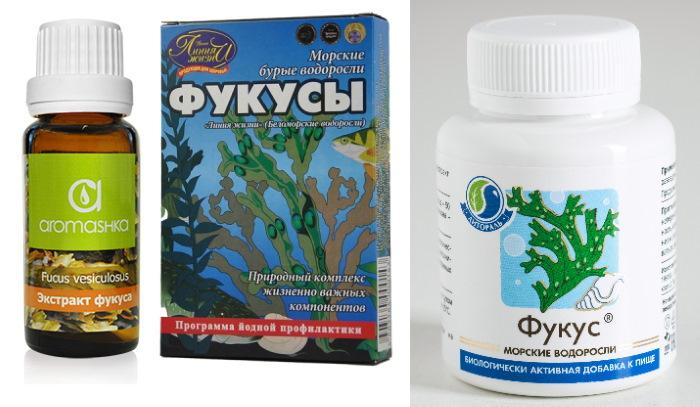 Фукус водоросль. Полезные свойства, противопоказания, описание, как употреблять