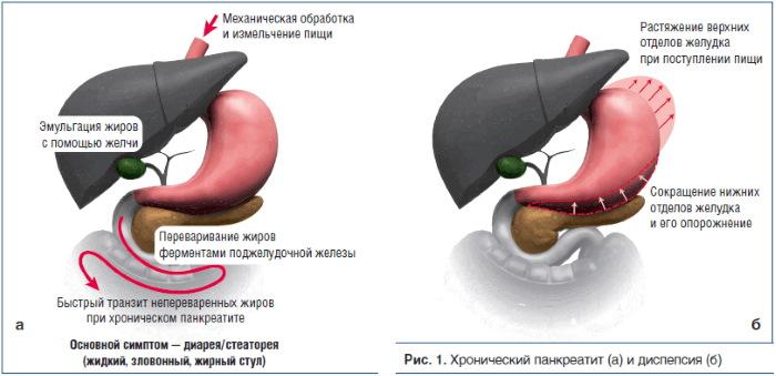Картофельный сок. Лечебные свойства, польза, как пить при гастрите для желудка, язве, для похудения