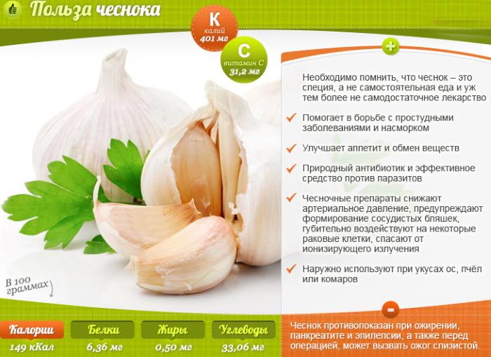 Чеснок. Полезные свойства для организма мужчин, женщин, рецепт, как принимать