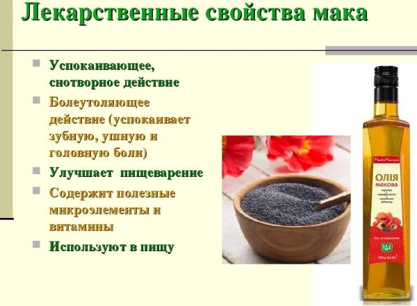 Мак. Польза и вред для здоровья, полезные свойства, противопоказания