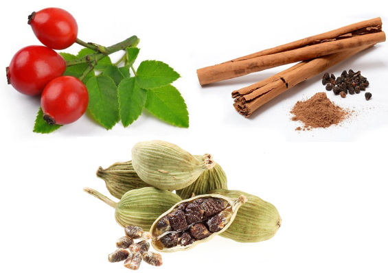 Плоды шиповника. Лечебные свойства для женщин, мужчин, детей, противопоказания