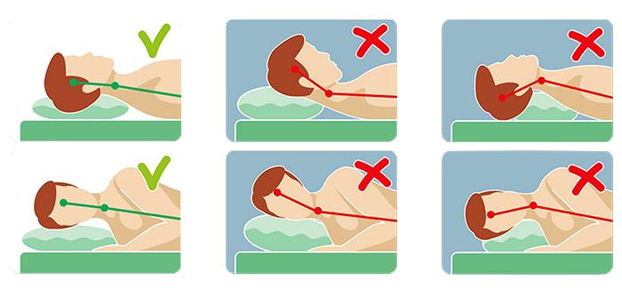 Подушка из кедровой шелухи, стружки. Свойства кедра, польза и вред, цена, отзывы