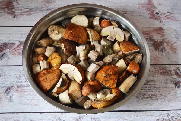 Гриб подосиновик. Фото и описание, рецепты, сколько варить, жарить, маринование