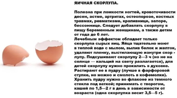 Яичная скорлупа. Польза для организма человека